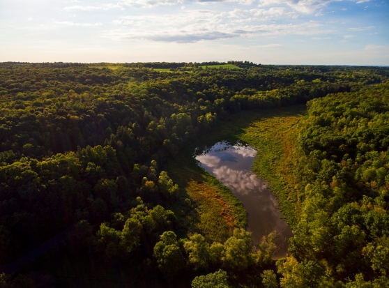Sep. 21, 2016. Aerial photo by Matt Champlin. Looking westward from the lower beaver dam near the SCA/cargile property line.