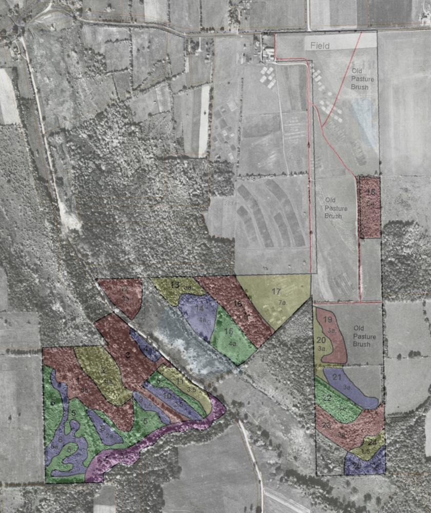 2002 tree survey overlaid onto 1951 aerial photo of the Federal Farm and Gully Road area.
