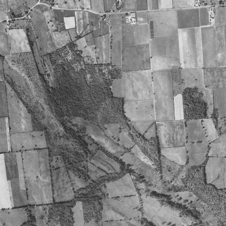 Aerial view of USDA Soil Management Research Farm and Gully Road properties, Sep. 5, 1938. Cornell University Library