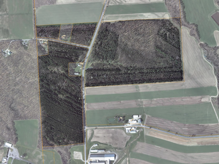 The Mabel M. Reynolds Nature Preserve satellite view (ca. 2012).