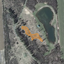 Approximate location of American chestnut planting, April 2015.